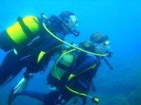 Pair of divers