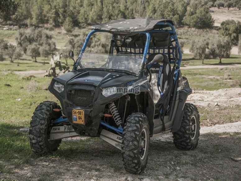 2 seat buggy