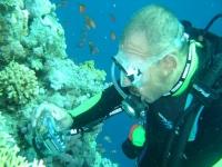 Cursos de fotografía submarina