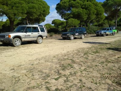 ATV route in Doñana Marshes for 3 hours