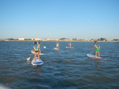 Ruta en paddle surf desembocadura del Guadalquivir
