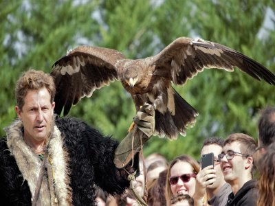 Visit the Bird Park of Calahorra Adults