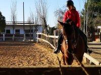 Montando a caballo por Catarroja