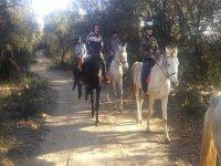乘坐Turó的马