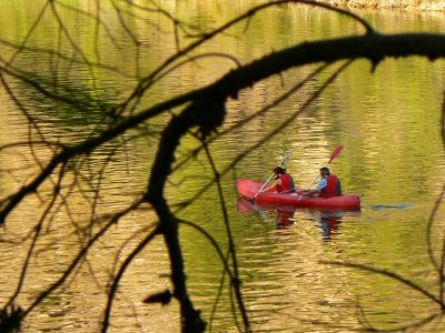 Hacer kayak en el Tajo a orillas de Zorita