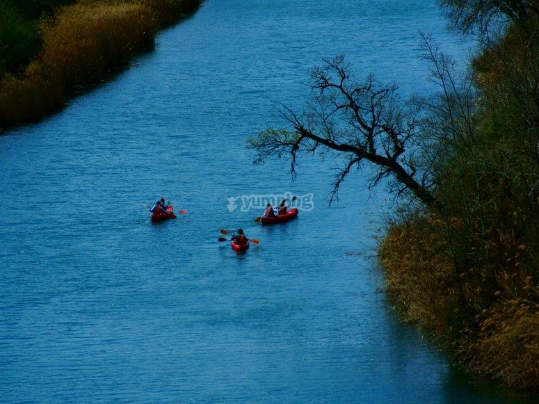 Relajados en el río Tajo