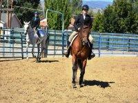 Clase de equitación en centro hípico madrileño