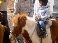 Clases de equitación infantil a partir de los 4 años