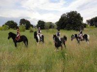 Excursiones a caballo por Las Rozas