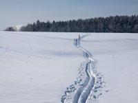 traza esqui de fondo