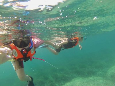 Snorkelling in Cartagena Oceanic posidonia