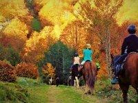 Ruta en temporada de otoño