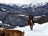 Ruta en plena montaña nevada