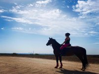 A caballo divisando Madrid