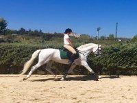 Clase de equitación en Madrid