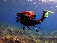 高级OWD潜水课程