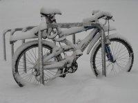 cuando nieva en Sierra Nevada