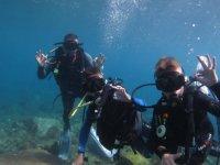 Todo OK在加那利群岛潜水