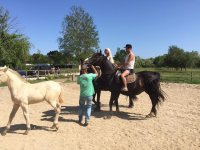 在原地学习骑马