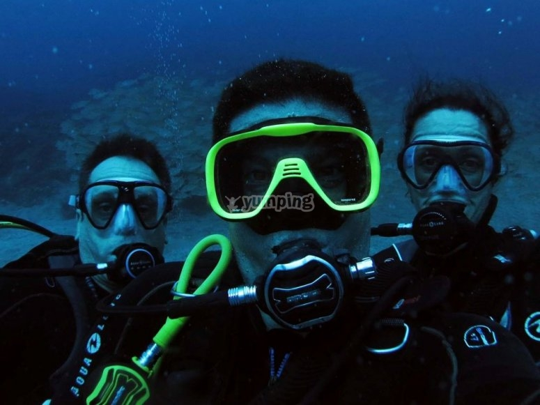 在朋友之间潜水