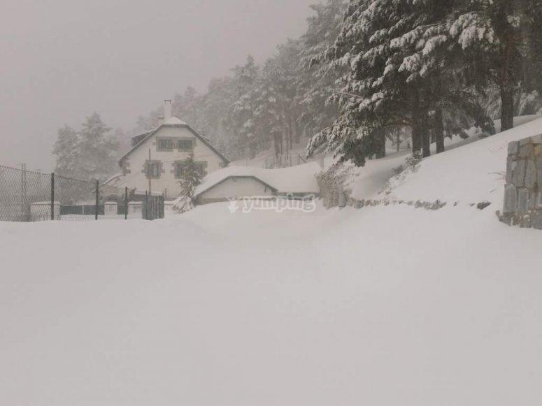 Todo nevado