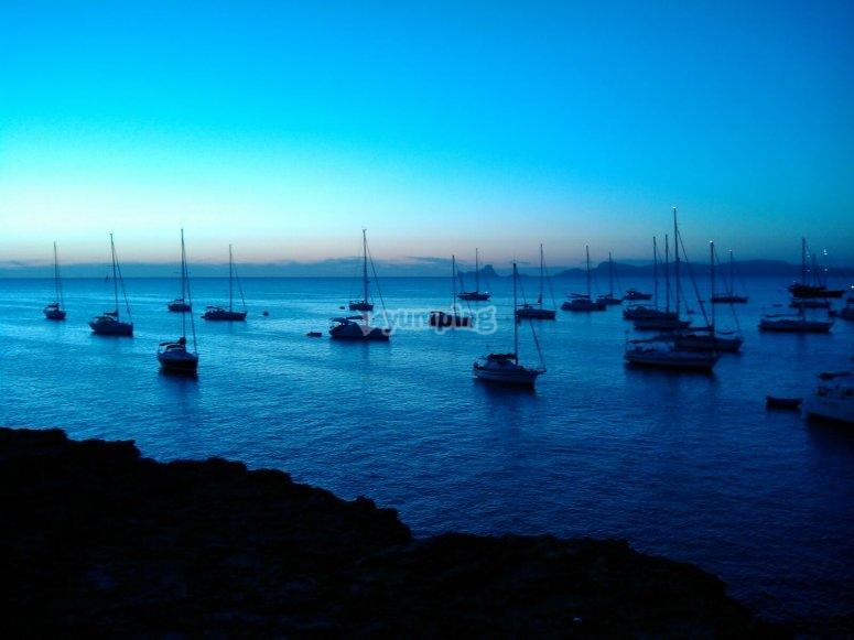海岸充满了船