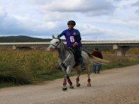 Joven entrenando con caballo