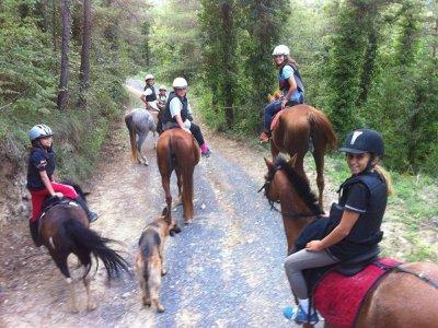 Excursión a caballo en Plana de Vic 1 hora