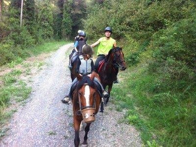Excursión a caballo en Malla durante 2 horas