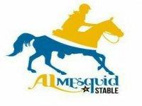 Al Mesquid Stable