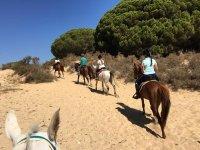 沿着加的斯海滩骑马