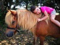 呵护女孩的马匹