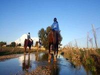穿过Sanlúcar的骑马小径