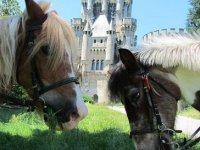caballo de fantasia