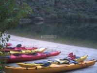 Los kayaks aparcados en la orilla