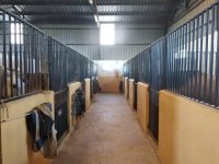 The stables of our equestrian center