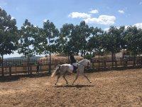 Clase de iniciación a la equitación en Benidorm