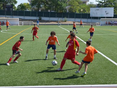 Campo esterno di calcio e inglese Valladolid