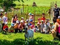 Niños en la granja escuela