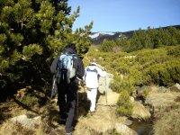Hacia la cima de las montañas sorianas