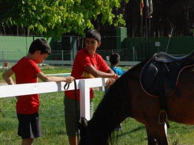 Campamento bilingüe en Tierra de Pinares