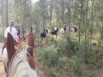 Hípica Pot Empuriabrava Rutas a Caballo