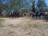 在马背上起始路线
