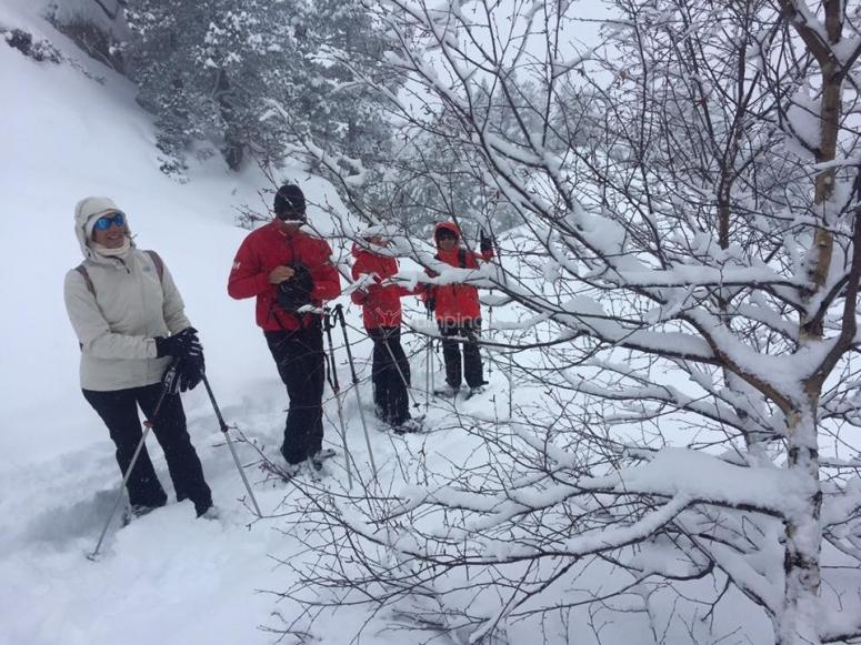 Escondiéndonos tras las ramas nevadas