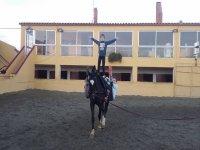 在马匹上保持平衡