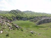 Cerca de los Lagos de Covadonga