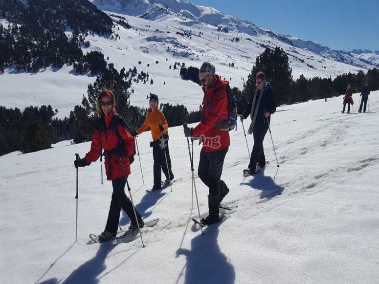 雪山比利牛斯山游览球拍