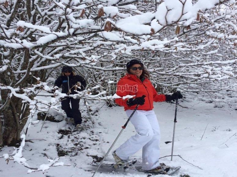 树木间雪靴传递