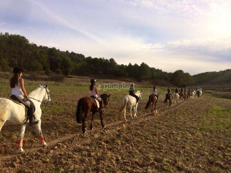 Marchando a caballo