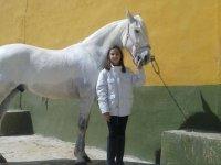 Pony per bambini a Guadalajara con monitor
